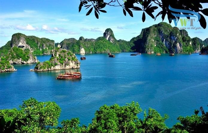 Doanh nghiệp tại Quảng Ninh tin dùng Chữ ký số Viettel